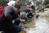 Busy with gold panning