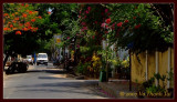 Pondicherry street scene