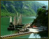 Junks in Yangtze