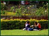 Baguio's Burnham park