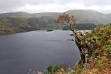 Day5_14_ Haweswater_p.jpg