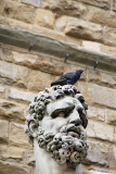 Bandinelli's Hercules with dove