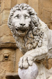 Vacca's lion (3)