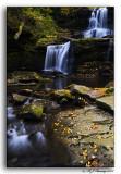 Tuscarora Falls