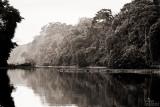 grey river