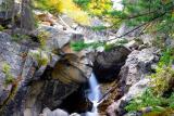 Creek along Independence Pass