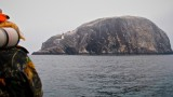 Bass Rock Firth of Forth