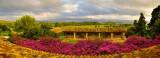 Alcanada Golf Course Majorca