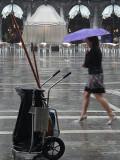 P1210381-pioggia sottolombrellamalva.jpg