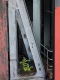 Essen-Zollverein-90293.jpg