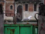 F-Venise-Paques09-1100553.jpg
