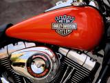 Harley Davidson_Eurofestival St_Tropez_2009