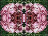 F-Eve-Paint-1230513-Quatuor.jpg