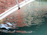 Reflets -Dorsoduro-20849.jpg