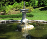 fountain in evergreen garden