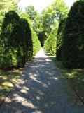 path to evergreen garden