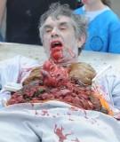 zombie_day