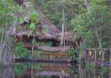 Rio Napo, Ecuadorian Amazonia 2005