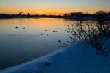 pbase  m9 sunrise real 1-22-11 1 of 1.jpg
