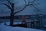 pbase Xmas tree on the dock 1-25-11 1 of 1.jpg