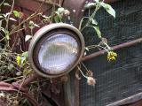 Headlight with sun flower