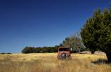 International truck in Texas field