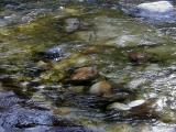 moving-water-Merced-river