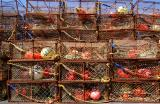 Crab Fishing Cases