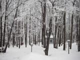 Nouvelle neige, St-Onésime-d'Ixworth