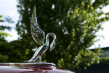 39 Packard Super 8