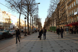 Les Champs Elysee
