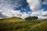 Fence at Wester Ross