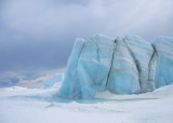 Icebergs trapped in fast ice