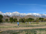 Manzanar Historic Site & Big Sur
