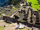 Unidentified Form of Wild Life, Machu Picchu