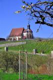 It Feels Spring, Volkach