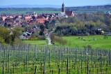 Charming Amorbach