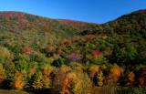 Lower Sugar Creek Fall Colors rdx tb10083a