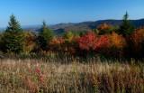 Black Mtn East View Fall Scene rdx tb10084a