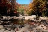 South Fork UpStream Fall Reflection tb10089a
