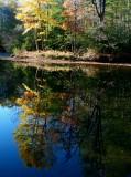 Cranberry Sunny Autumn Reflection v tb11082d