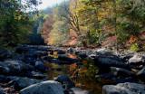 Cranberry Autumn Stream Reflection tb11081k