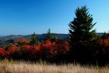 Autumn Big Spruce Knob View tb10086f