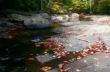 North Fork Fall Rocky Downstream tb10087g