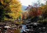 South Fork Autumn Downstream tb10089c