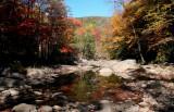 South Fork Upstream Fall Reflection tb10082r