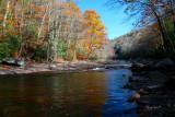 Mid Williams River Fall Long View tb11087g.jpg