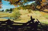 Sugar Ridge Farm thru Slpit Rail Silhouette tb1009rx.jpg