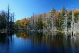 North Cherry Beaver Dam Autumn Reflection tb0928kw.jpg