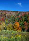 Autumn View of Sugar Creek Ridge tb0929dgr.jpg